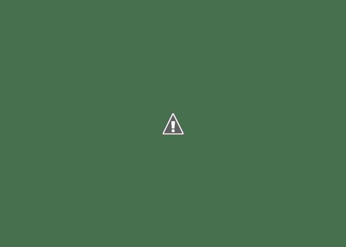 冬の羅臼国後展望塔からの風景