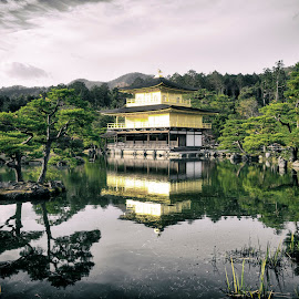 Golden Temple by Martin Behrens - Buildings & Architecture Public & Historical ( kyoto, medium format, japan, reflections, light, golden, temple, lake, japanese culture, colors )