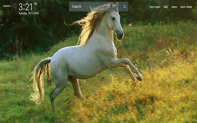 Horses Animals Wallpapers Hd Theme Images, Photos, Reviews
