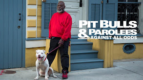 Pit Bulls & Parolees: Against All Odds thumbnail