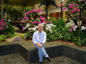 Photo: Sam Aéroport de Singapour