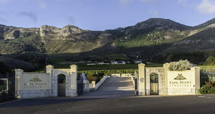 Cape Point Vineyard.