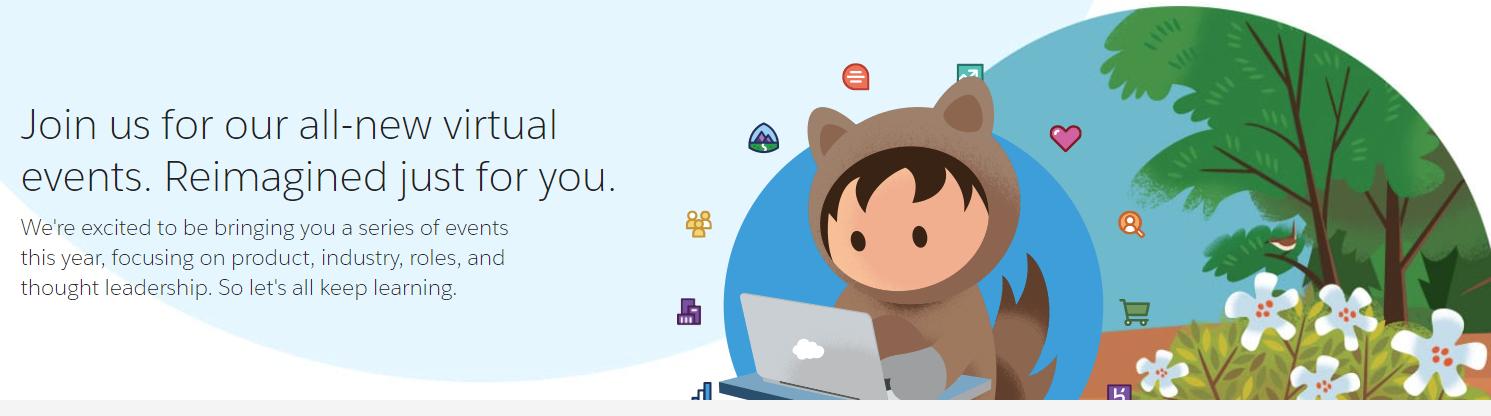 Salesforce Webinar screen shot