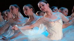 American Ballet Theatre: A History thumbnail