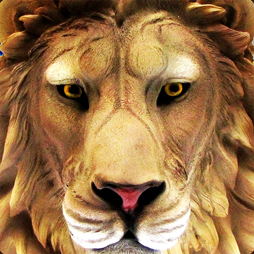 Lion Vs Tiger 2 Wild Adventure