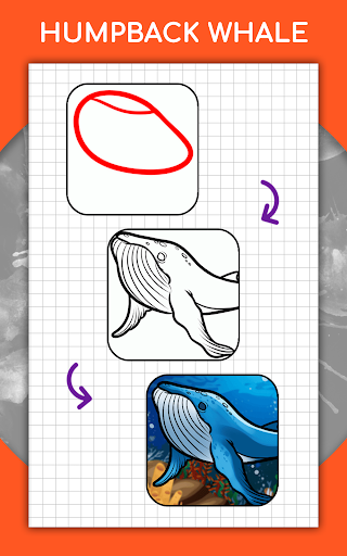 How to draw animals step by step, drawing lessons 1.3 Screenshots 14