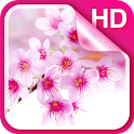 Sakura Live Wallpaper HD icon