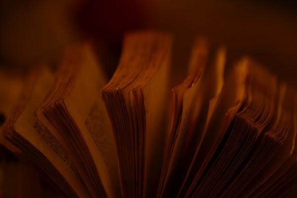 Book di Andrea Maria Mazzola
