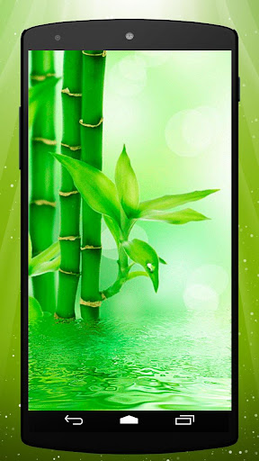 Bamboo Live Wallpaper