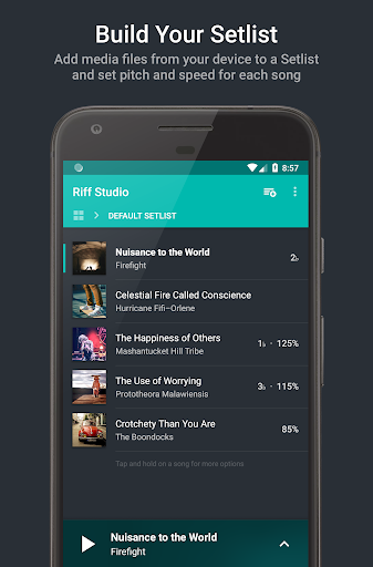 Riff Studio 3.1.5 screenshots 1