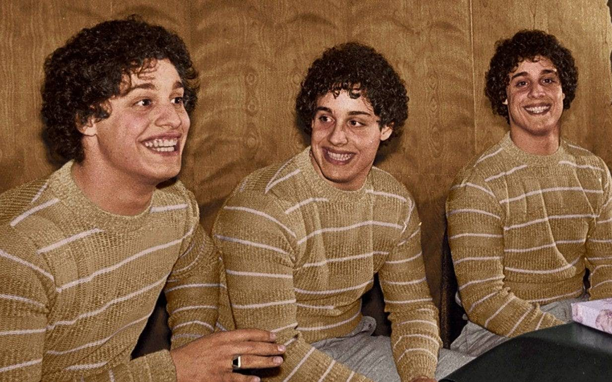 Three Identical Strangers Official Site