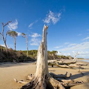 20120406 Red Beach @ Bribie Island025.jpg