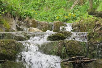 Photo: H5111332 Steznica