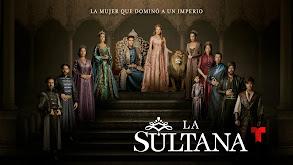 La sultana thumbnail