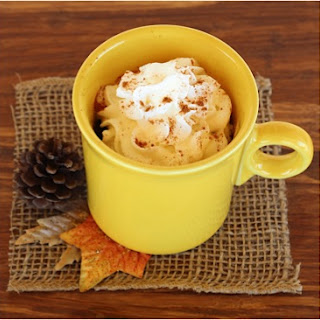 Easy Spice Mug Cake Recipe! {3-2-1}