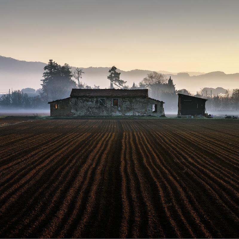 Le prime luci del giorno di Alberto_Caselli