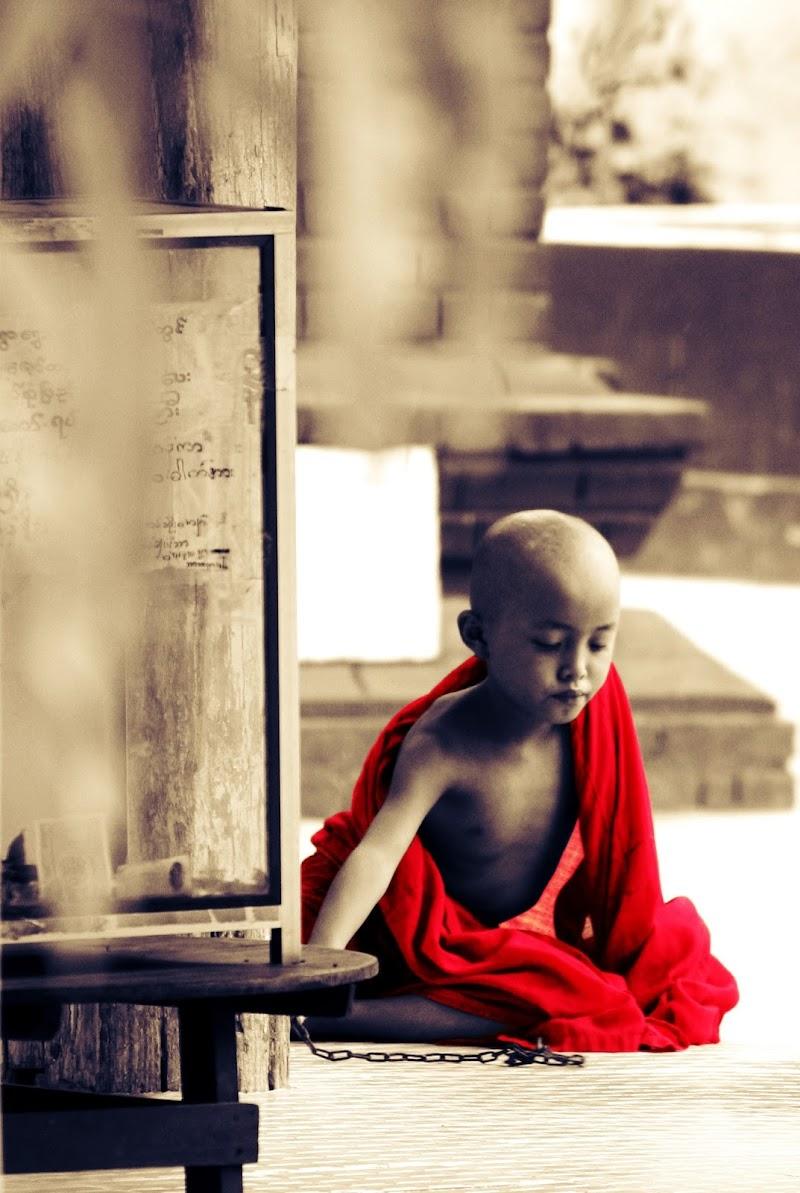 L'abito non fa il monaco di Migliu