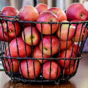 Fall Applies by Deborah Lucia - Food & Drink Fruits & Vegetables ( fruit, red, basket, apples,  )