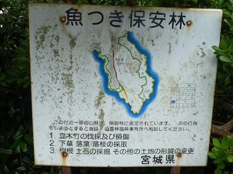 歌津崎周辺の保安林マップ