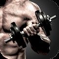 Body Transform Workouts