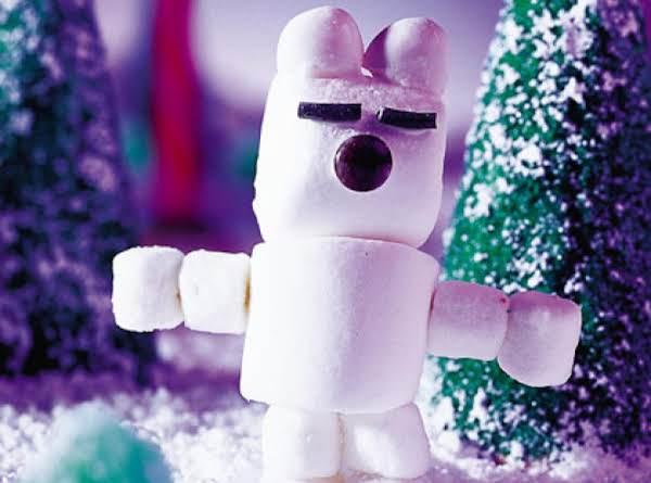 Puffy The Polar Bear