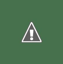 Photo: Bo werkt niet mee voor haar closeup,Puck en Max willen er juist maar al te graag bij op de foto.