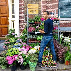Flower Man of Amsterdam, by Russ Quinlan - People Portraits of Men ( flowers, holland, amsterdam, steet, man, portrait, travel )