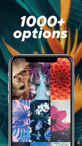 Download VV – Wallpapers HD & Backgrounds apk 2020