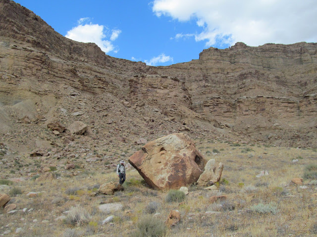 A boulder with petroglyphs on it
