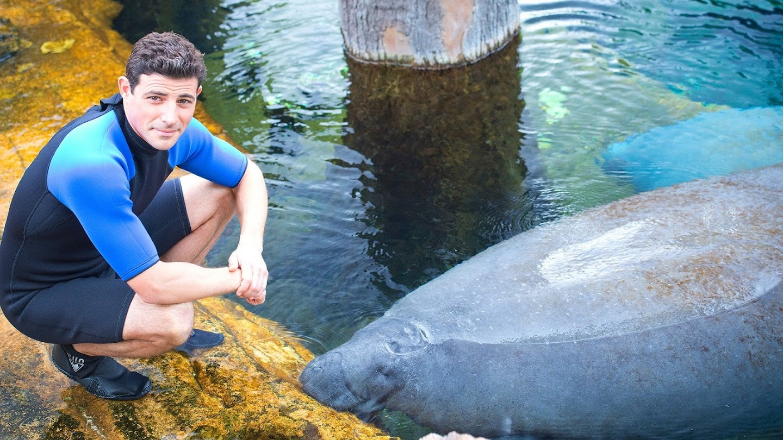 Watch Sea Rescue With Matt Gutman live