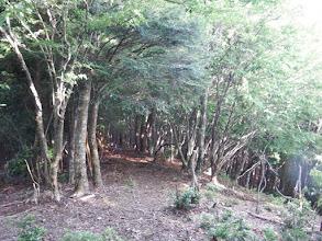 クチスボダム方面への下山路