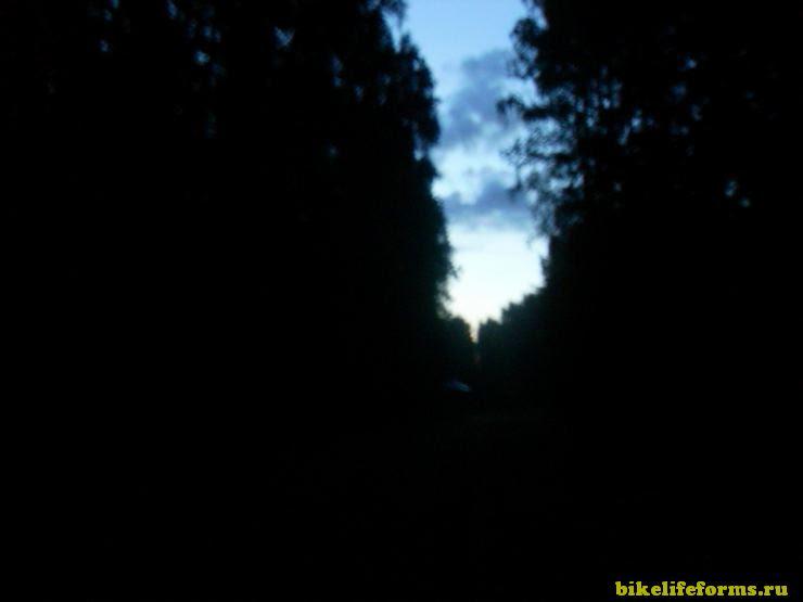 Ночные дорожи в Завидово