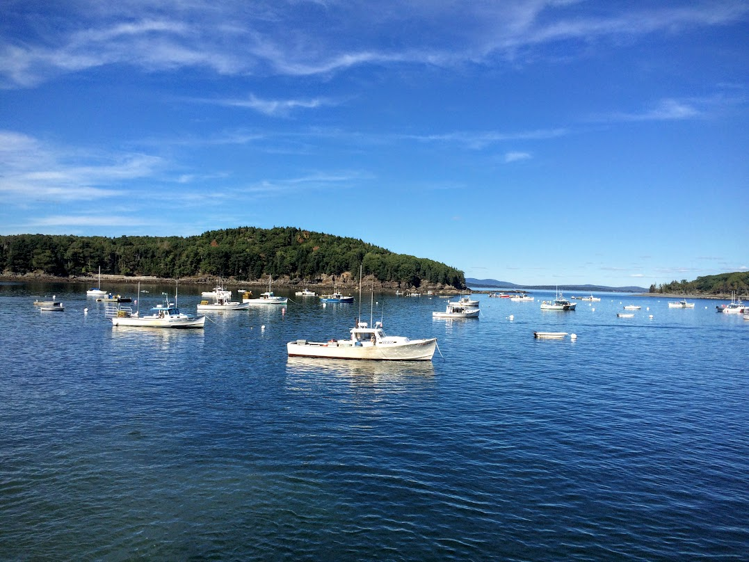 Looking out toward Bar Island from the harbor. We had fun watching the lobster boats come in and unload their catch.