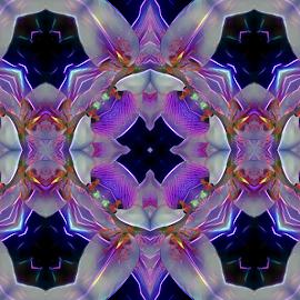 by Cassy 67 - Digital Art Things