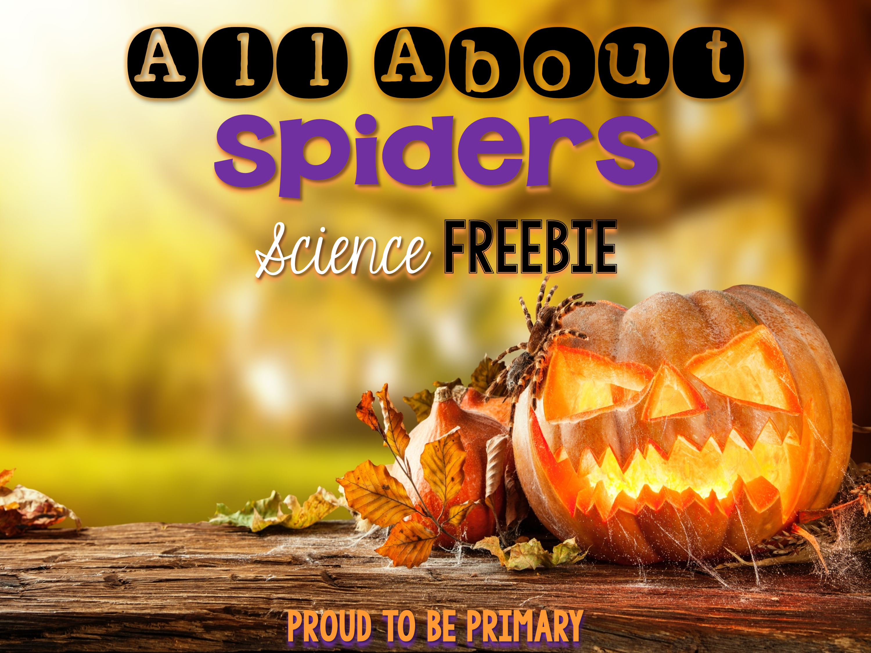 all about spiders - Science freebie