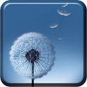 Dandelion S7 live wallpaper icon