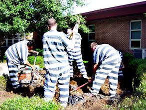 Photo: Convict Labor