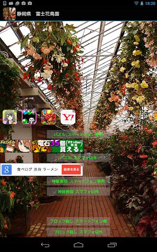 無料旅游Appの静岡県 花とフクロウ(JP183)|記事Game
