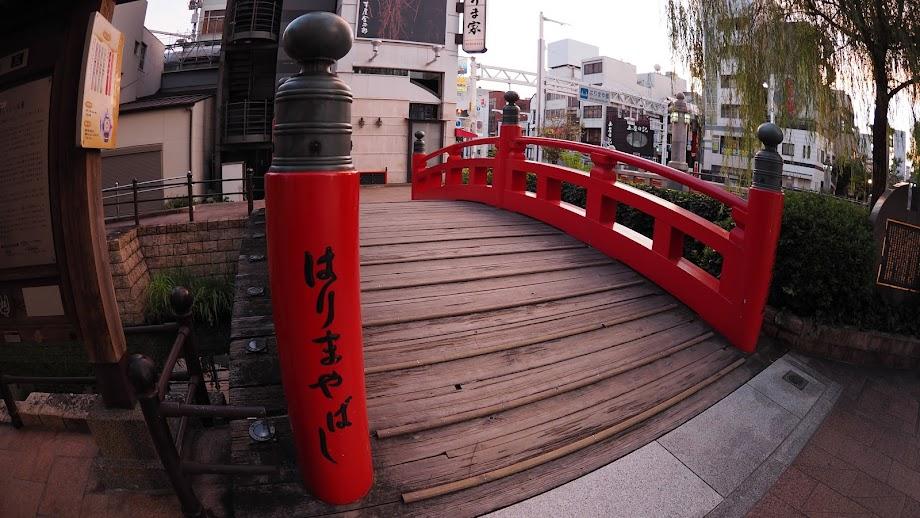 【高知】四国縦断一人旅 – はりまやばし、高知城、桂浜、長宗我部家縁の地巡り