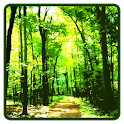 Forest Wallpaper icon