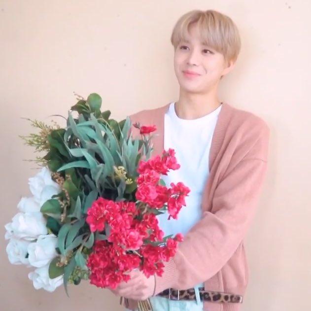 jung flower 5