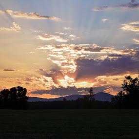 Awake by Tinajayne Bosland - Landscapes Sunsets & Sunrises ( oregon, dawn, sunrise, illumination, morning, daybreak )