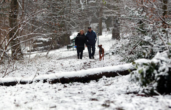 Photo: A couple walk with their boxer dog through a snow dusted Redhouse Park in Birmingham, as the first wave of snow dusted eastern England, with a second heavier band expected to move south and east across the country later. PRESS ASSOCIATION Photo. Picture date: Monday January 14, 2013. See PA story WEATHER Snow. Photo credit should read: David Jones/PA Wire
