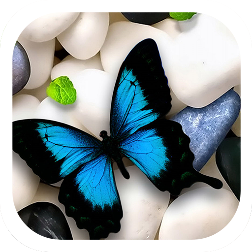 Butterfly on Stones Theme