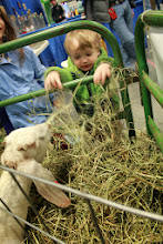Photo: Driscoll Sinnott feeding friendly goats at Farm Show