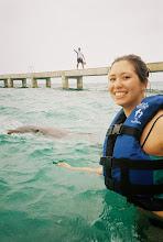 Photo: Dolphins like me!