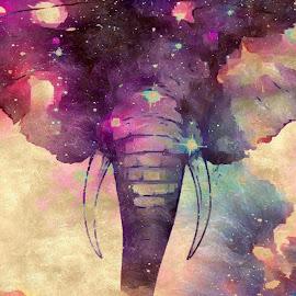 by Dalton Barber - Illustration Animals ( elephant, stars, pink )