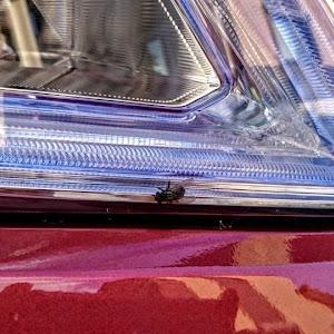 セレナ HFC26 ハイウェイスターのカスタム事例画像 武羅魔茶さんの2020年07月19日13:06の投稿