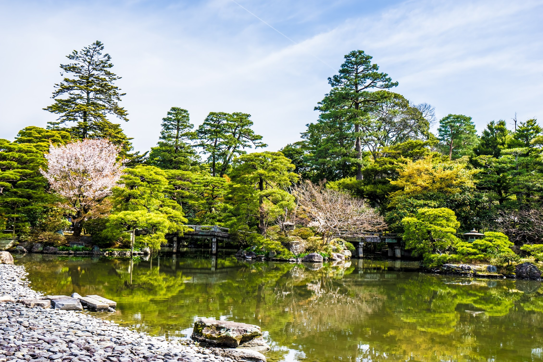 Kyoto Imperial Palace Oikeniwa3