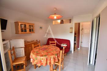 appartement à Port camargue (30)